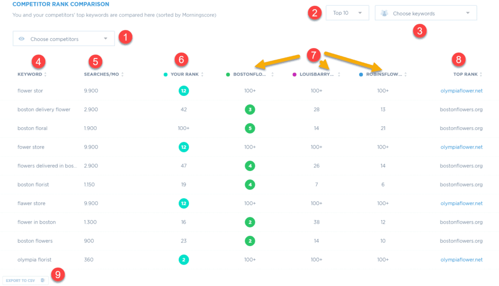 View and compare your keyword ranks with your competitor